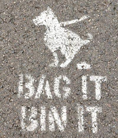 Dog Waste - bag it and bin it