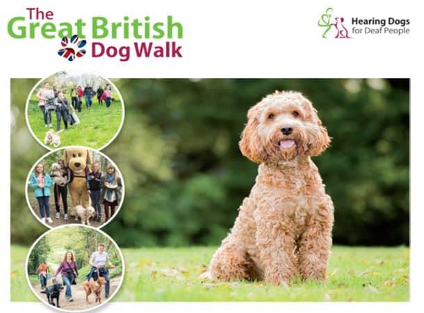 great-british-dog-walk